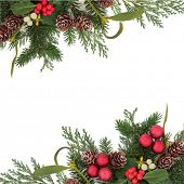 Christmas floral background border with red baubles, holly, ivy, mistletoe, pine cones and winter gr