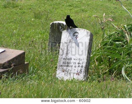 Friedhof 1 Crow