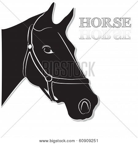 Horse Head In Black And White Vector