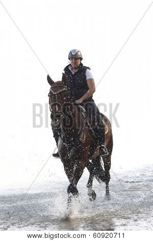 Young horsewoman horse riding in the water.
