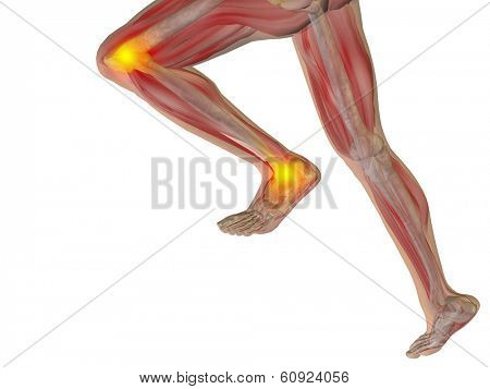 Conceptual 3D human man anatomy or health design, joint or articular pain, ache injury isolated on white background, for medical, fitness, medicine, bone, care, hurt, osteoporosis, arthritis or body