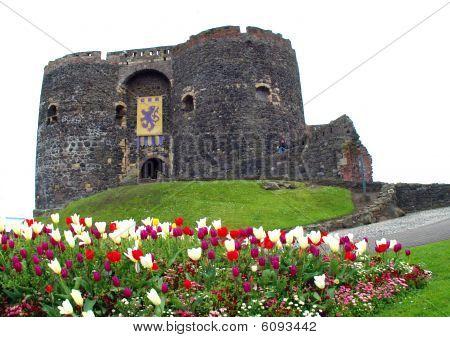 Castillo de Carrickfergus
