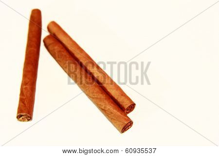 Natural Cigarillo Isolated On The White Background