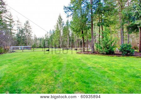 View Of The Countryside Backyard With Lawn And Rest Outdoor Area