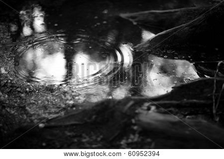 Raindrop hitting puddle