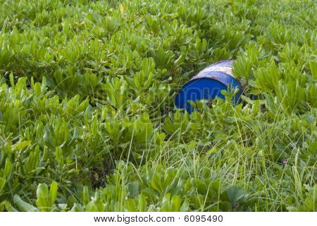 Barrel In Grass
