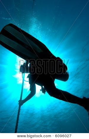 Silhouette Of A Diver Completing A Saftey Stop On A Mooring Line.