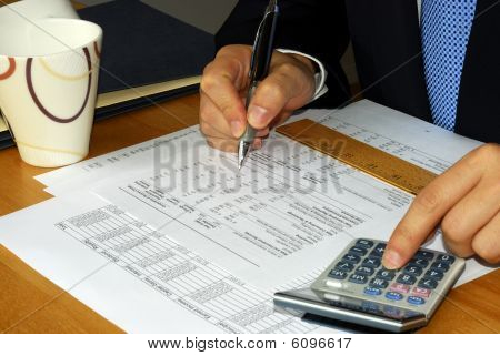 Checking the company financial statement by the accountant
