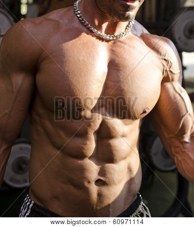 Muscular Torso Of Shirtless Man In Gym During Workout