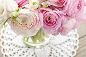 picture of buttercup  - White and pink ranunculus  - JPG