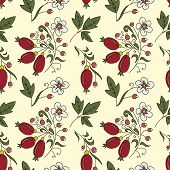 image of barberry  - seamless texture barberry with white flowers on a beige background - JPG