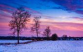 Sunset Over Trees And Snow Covered Farm Fields In Rural Frederick County, Maryland. poster