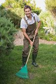 stock photo of dungarees  - Full length portrait of a young man in dungarees raking the garden - JPG