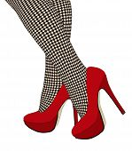 foto of fishnet stockings  - The checkered fishnet stockings  - JPG