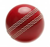 picture of cricket ball  - Red Cricket Ball Isolated on White Background - JPG