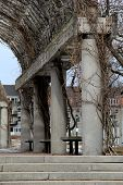 picture of creeping  - Old stone columns covered in strong creeping vines - JPG