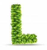 Letter L,  vector alphabet of green leaves