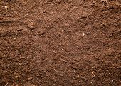 picture of farm land  - Soil background - JPG