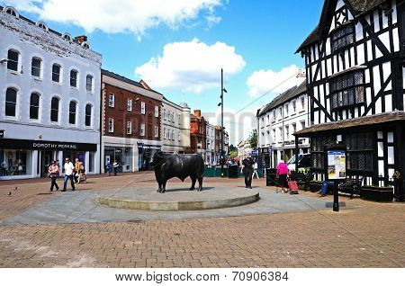 Bull statue in Hereford town centre.