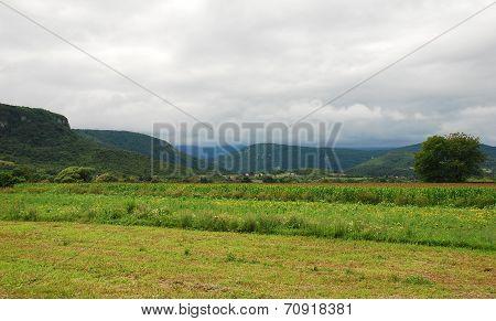 Bosnian Landscape