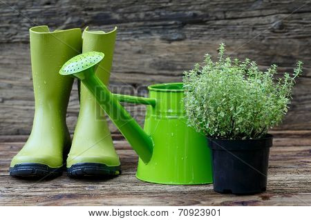 Gardening tools on old wooden planks