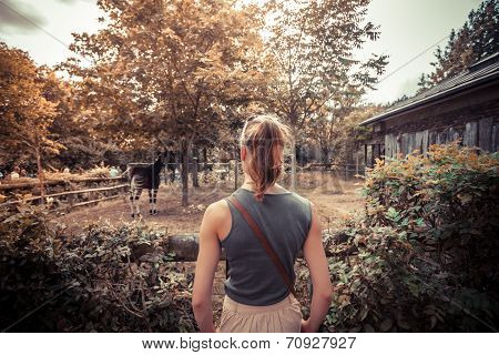 Young Woman Looking At Animals In The Zoo
