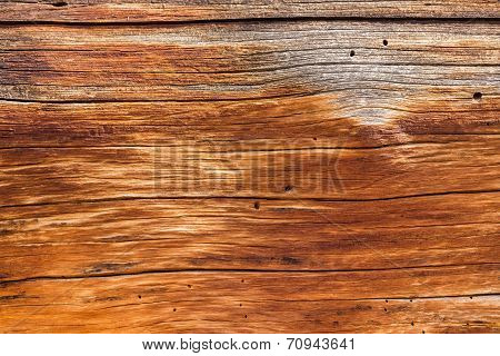 Background Close Up Of Cedar Trunk Wood