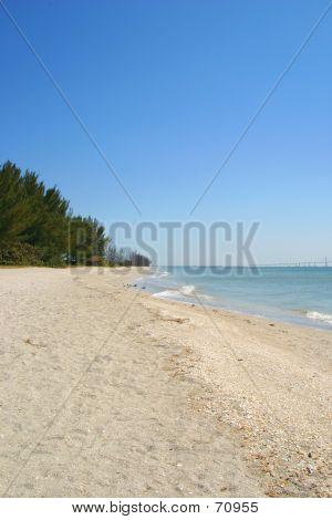 Serene Beach Vertical