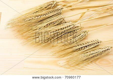 Barley on wood board
