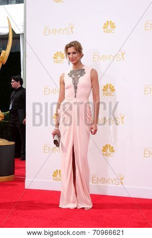 LOS ANGELES - AUG 25:  Alysia Reiner at the 2014 Primetime Emmy Awards - Arrivals at Nokia at LA Live on August 25, 2014 in Los Angeles, CA