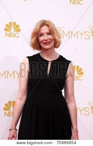 vLOS ANGELES - AUG 25:  Frances Conroy at the 2014 Primetime Emmy Awards - Arrivals at Nokia at LA Live on August 25, 2014 in Los Angeles, CA