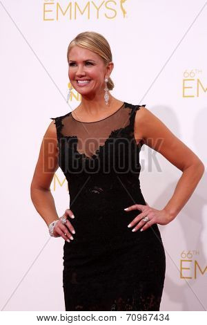 LOS ANGELES - AUG 25:  Nancy O'Dell at the 2014 Primetime Emmy Awards - Arrivals at Nokia at LA Live on August 25, 2014 in Los Angeles, CA
