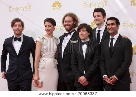LOS ANGELES - AUG 25:  Silicon Valley at the 2014 Primetime Emmy Awards - Arrivals at Nokia at LA Live on August 25, 2014 in Los Angeles, CA