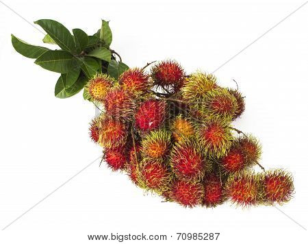 south american exotic fruits