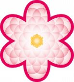 stock photo of merkaba  - Pink bloom made of a transparent Flower of Life - JPG