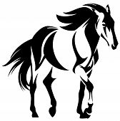 pic of mustang  - wild horse black and white outline  - JPG