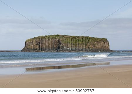 Beach at Shellharbour,NSW,Australia