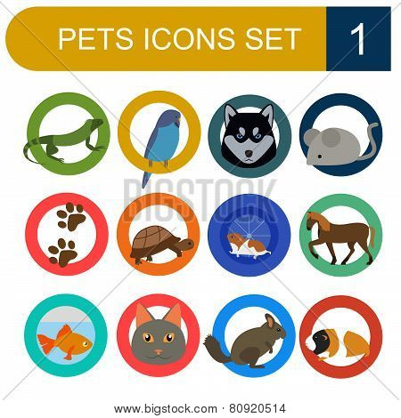 Domestic pets and vet healthcare flat icons set.