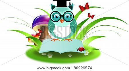 Blue Owl On Book In Grass
