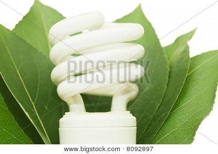 Energy Saving Light Bulb On Green Leaves