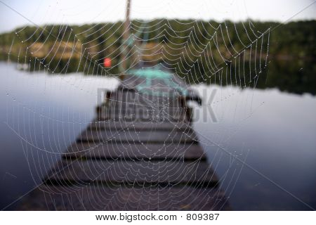 Spider Web On The Pier