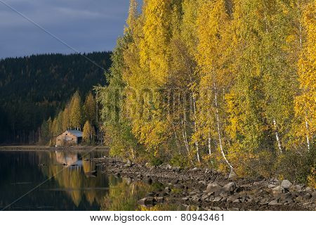 Lake-shore in autumn colors.