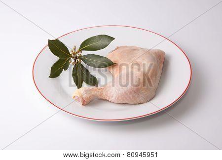 Chicken Leg With Bay Branch