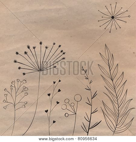 Plants and branches on the brown craft paper. Vector design elements