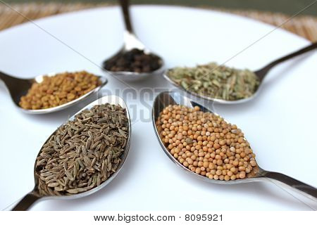 Assortment Of Dry Spices Close Up View