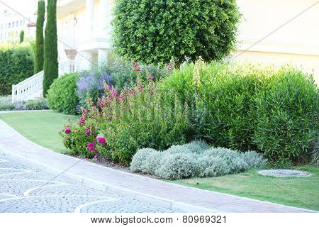 Beautiful landscaping in garden