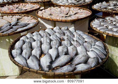 Sundry Snake Skin Gourami Fish In A Bamboo Basket. Thailand