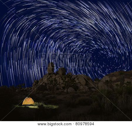 Long Exposure Star Trails In Joshua Tree National Park