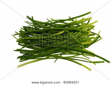 Isolated chives herb