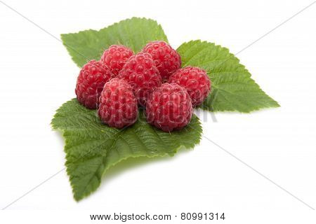 Raspberries Are On The Leaves Raspberries On A White Background.